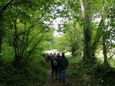 Coed y Bedw Woodland Walkers
